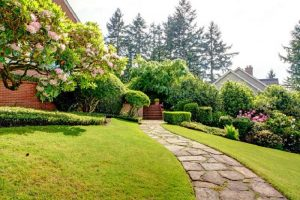 Essential factors to consider for a successful landscaping project