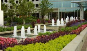 commercial landscaping company